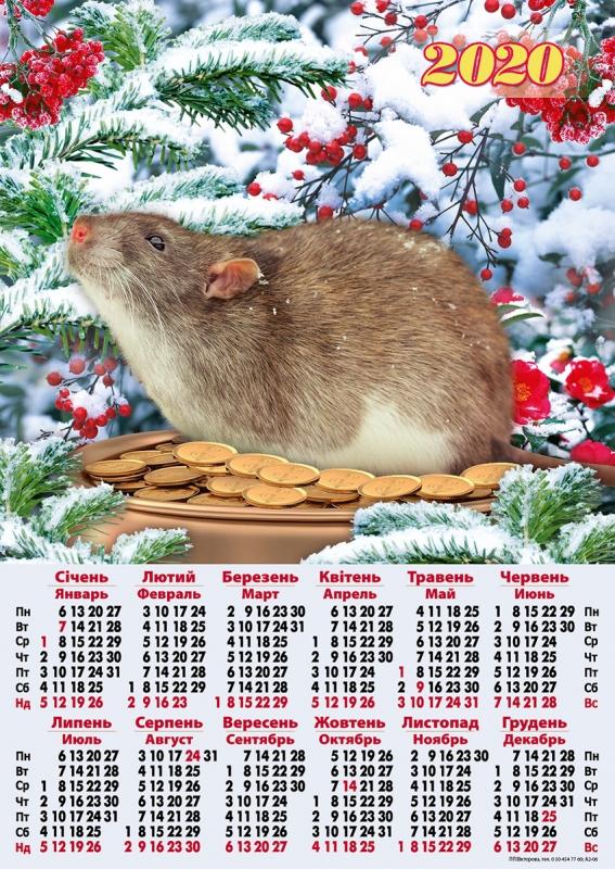 это визуальный покажи календарь все годы картинки поддаются дрессировке могут